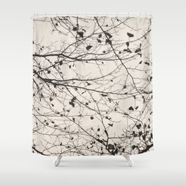 boughs pale Shower Curtain