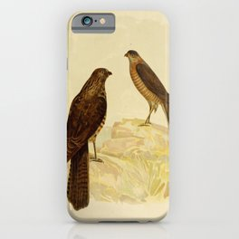 Vintage Print - The Birds of Australia (1891) - West Australian Goshawk / Collared Sparrowhawk iPhone Case