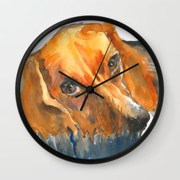 Curious Beagle Wall Clock