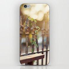 Bokeh and Fleur de Lis iPhone & iPod Skin