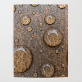 Water Drops on Wood 4 Poster