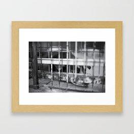 Caged & Forgotten  Framed Art Print