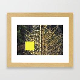 SQ1  Framed Art Print