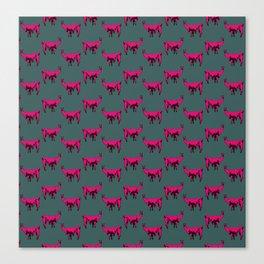 Llamas! Canvas Print