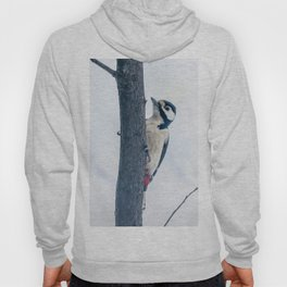 Great spotted woodpecker Hoody