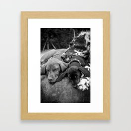 Pile of Dogs Framed Art Print