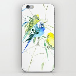 Parakeets green yellow blue bird decor iPhone Skin