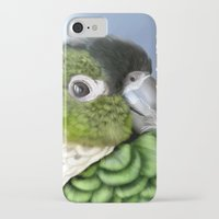 thorin iPhone & iPod Cases featuring Thorin by Lily Art