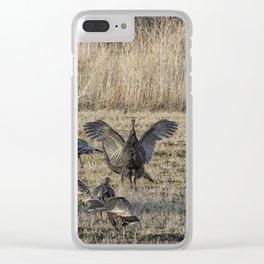 Flock of Wild Turkeys Clear iPhone Case