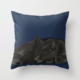 Nine Hour Nap Throw Pillow