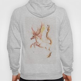 made of fire Hoody
