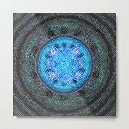Onion Cell Metal Print