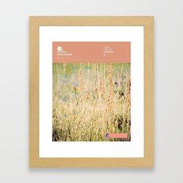 The Visual Mixtape 2010 | Fleet Foxes | 05 / 25 Framed Art Print