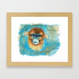 Rhinopithecus roxellana Framed Art Print
