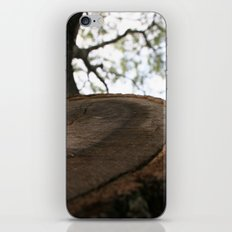 Nature Cracked iPhone & iPod Skin