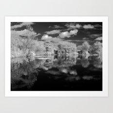 Dark reflections. Art Print