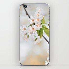 spring iPhone Skin