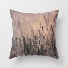 Barley-Pink Throw Pillow