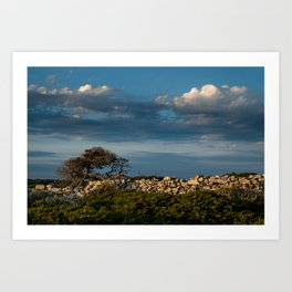 Wood, stone and clouds Art Print