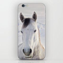 Rustic Winter Horse iPhone Skin