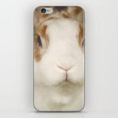 Bunny iPhone & iPod Skin