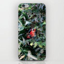 An richt elves 1 (le royaume des elfes 1) iPhone Skin
