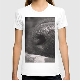 Love Is In The Wet Nose Of A Dog. T-shirt