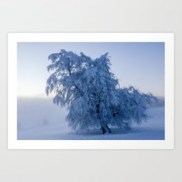 Snowy Tree on a Foggy Mountain Sunrise - Landscape Photography Art Print