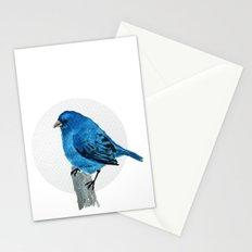 Messenger 005 Stationery Cards