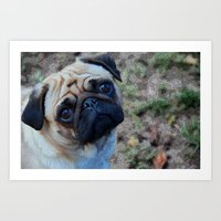 pug Art Prints featuring Pug by Crayle Vanest