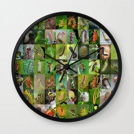 Caterpillar Montage Wall Clock