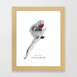 Natura Technica - Prehensile Tailed Porcupine Framed Art Print