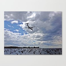 Flying Above and Below, Toronto Harbour Canvas Print