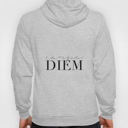 CARPE DIEM SIGN, Famous Quote,Seize The Day,Inspirational Quote,Motivational Quote,Office Decor,Home Hoody