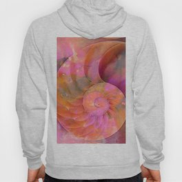 Colorful Nautilus Shell By Sharon Cummings Hoody