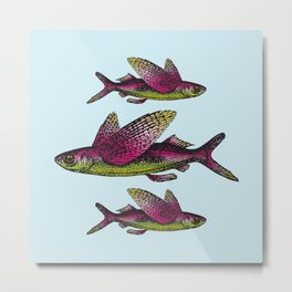 Flying Fish   Vintage Flying Fish   Metal Print