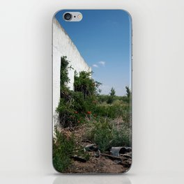 balmorhea, texas structure iPhone Skin