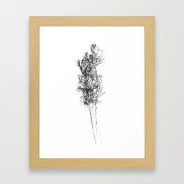 WABI SABI Dead Leaves. Framed Art Print