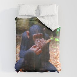 Young Chimpanzee 03 Comforters