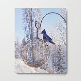 Blue Jay on a Frosty Day Metal Print