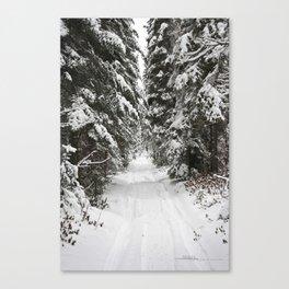 AbitibiWinter10 Canvas Print