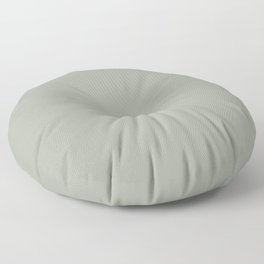 DESERT SAGE dusty solid color Floor Pillow