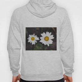 Old And Young Daisies Texture Hoody