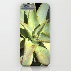 Agave I Slim Case iPhone 6s