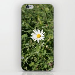 lonely flower, color photograph iPhone Skin