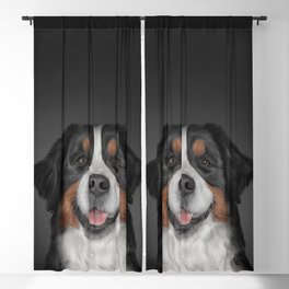 Bernese Mountain Dog Blackout Curtain