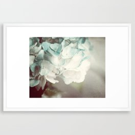 Soft Teal Hydrangea  Framed Art Print