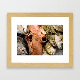 Fish at La Boqueria  Framed Art Print