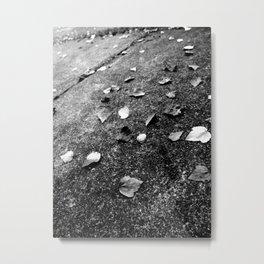 NATURE ART 6 Metal Print