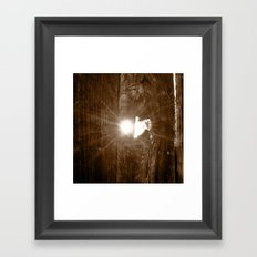 Wooden Gate Framed Art Print